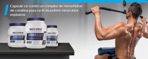 creatina-monohidrata