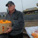 vinde portocale