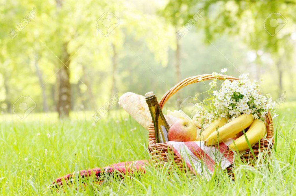 5-lucruri-de-care-ai-nevoie-la-un-picnic