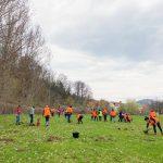 DS-Smith_Actiune-plantare-copaci