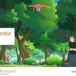 Vizual-managementul-forestier-20210720_1200x675