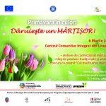 banner-online_Targ-de-Martisor-01
